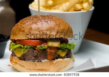 Cheeseburger close up - stock photo