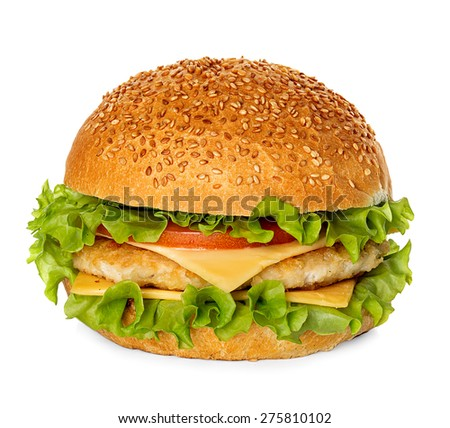 Cheeseburger isolated on white background - stock photo