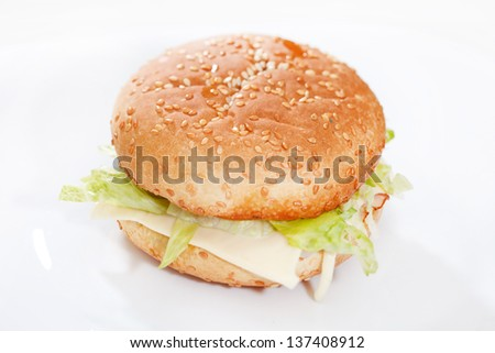 cheeseburger on the white plate