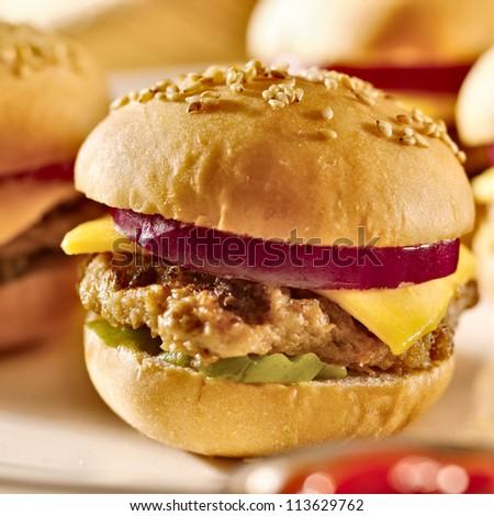 cheeseburger platter closeup - stock photo