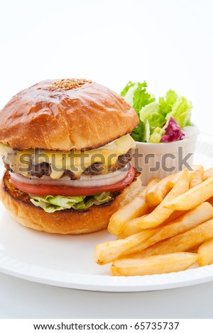 cheeseburger with french fries - stock photo