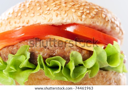 Cheeseburger with tomatoes and lettuce, macro - stock photo