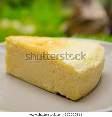 cheesecake on the plate - stock photo