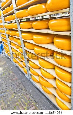 Cheeses - stock photo