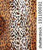 Cheetah skin Pattern texture - stock photo