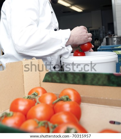 chef selects tomatoes in a restaurant - stock photo