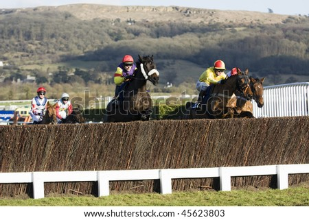 CHELTENHAM, GLOUCS - JAN 30: Jockeys steeplechase in the fourth race at Cheltenham Racecourse January 30, 2010 in Cheltenham, Gloucestershire