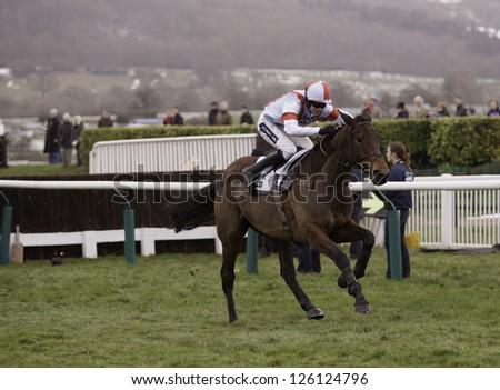 CHELTENHAM, GLOUCS-JANUARY 26: Jockey Aidan Coleman rides Katenko in the third race at Festival Trials Day, Cheltenham Racecourse, Cheltenham UK on Jan 26, 2013. - stock photo