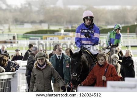 CHELTENHAM, GLOUCS-JANUARY 26: Jockey Ruby Walsh returns from the first race with Irish Saint at Festival Trials Day, Cheltenham Racecourse, Cheltenham UK on Jan 26, 2013. - stock photo