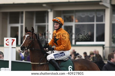 CHELTENHAM, GLOUCS,  NOV 14; jockey Daryl Jacob rides Pistolet Noir to the start of the first race at Cheltenham Racecourse, UK, November 14, 2009 in Cheltenham, Gloucs - stock photo