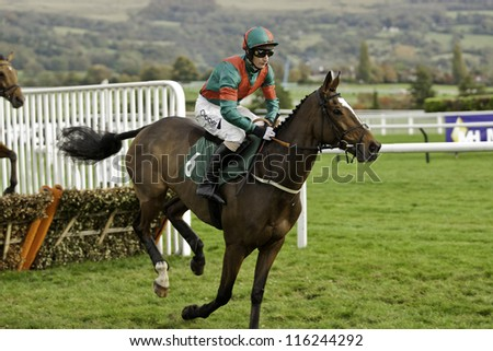 CHELTENHAM, GLOUCS, OCT 20 2012, Daryl Jacobs takes Brass Tax over hurdles in the first race at Cheltenham Racecourse, Cheltenham UK Oct 20 2012 - stock photo
