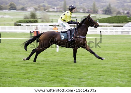 CHELTENHAM, GLOUCS, OCT 19 2012, Jockey Nick Schofield takes Sir Kezibah to the start in the third race at Cheltenham Racecourse, Cheltenham UK Oct 19 2012