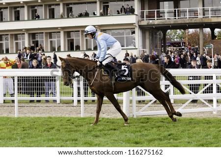 CHELTENHAM, GLOUCS, OCT 20 2012 jockey Sam Twiston-Davies takes Mae Moose to the start of Cheltenham Racecourse, Cheltenham UK Oct 20 2012 - stock photo