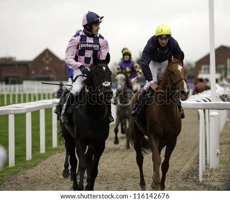 CHELTENHAM, GLOUCS, OCT 19 2012, Jockeys Jimmy McCarthy and Ruby Walsh return from the third race at Cheltenham Racecourse, Cheltenham UK Oct 19 2012 - stock photo