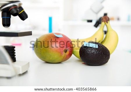 Chemical Laboratory of the Food supply . Food in laboratory, dna modify Toning image - stock photo