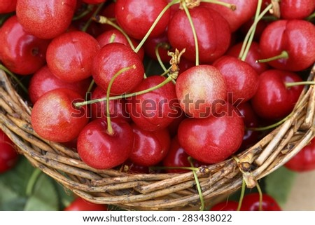 Cherries fruit in the basket  - stock photo
