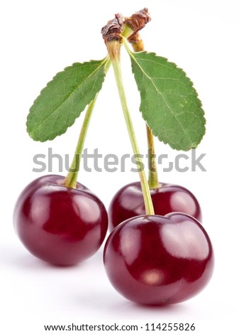 Cherries with leaves on a white background. - stock photo