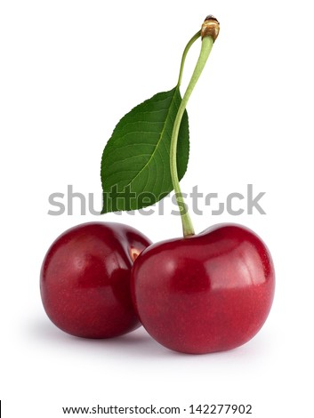 Cherries with the leaf isolated on white. Clipping path