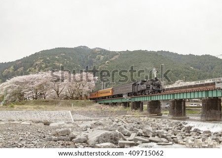 Cherry blossom and steam train, Japan.