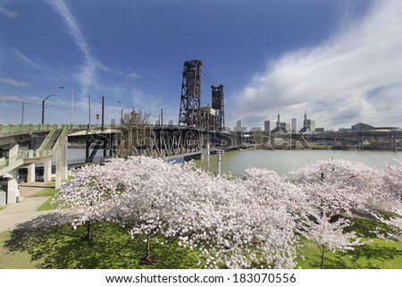 Cherry Blossom Trees at Portland Oregon Downtown Waterfront with Steel Bridge During Spring Season - stock photo