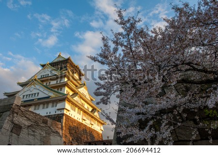 Cherry Blossoms and Osaka Castle - stock photo