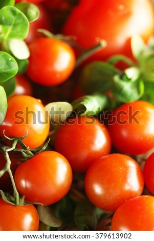 cherry tomatoes and salad - stock photo