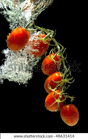 cherry tomatoes branch falls into the water