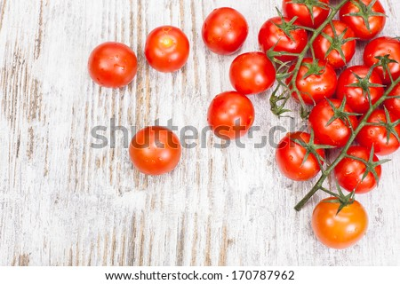 Cherry tomatoes. Cherry tomatoes on vine with water drops.  Copy space composition - stock photo
