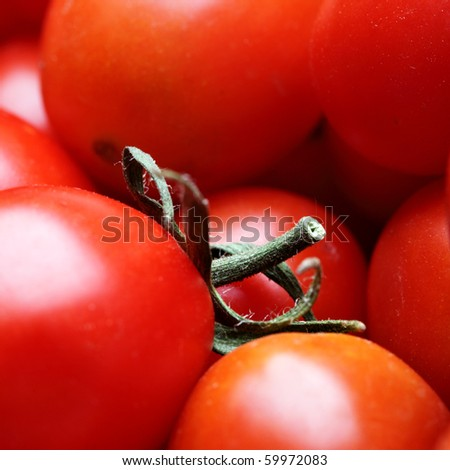 Cherry tomatoes close up. Shallow DOF! - stock photo