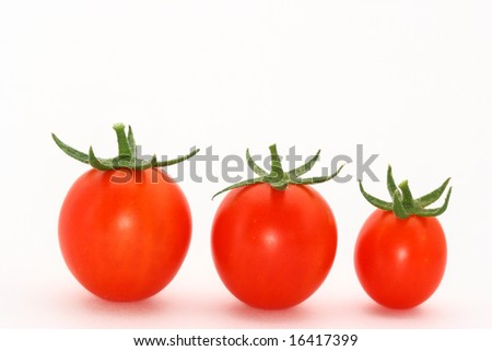 cherry tomatoes in a row