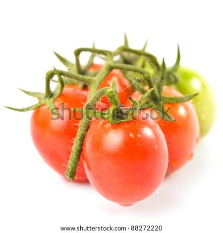 Cherry tomatoes on twig isolated on white background