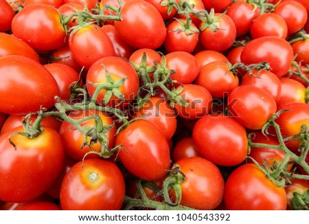 Cherry Tomatoes Red