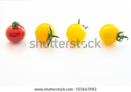 Cherry Tomatoes Series (1 red& 3 yellow) - stock photo