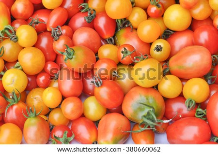 Cherry tomatoes (Solanum lycopersicum) vegetables vegetarian food