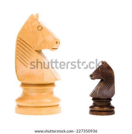 Chess knights isolated on white background - concept - stock photo
