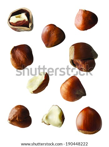 Chestnut, full, broken, piece and half on the white background