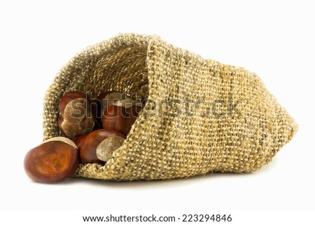 Chestnuts in hessian sack on white - stock photo