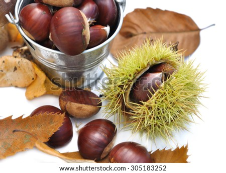 chestnuts, leaves on white background - stock photo