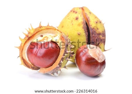 Chestnuts on a white background - stock photo