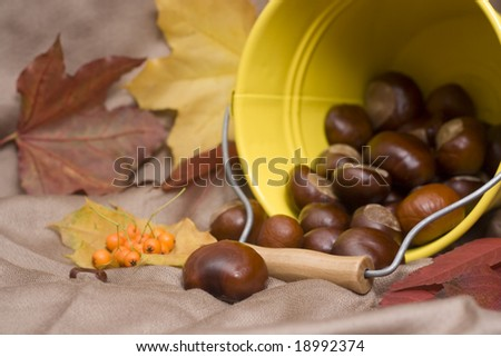 chestnuts spilling out from a yellow bucket