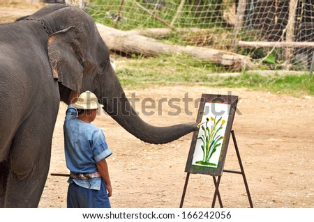 CHIANG MAI, THAILAND - Daily elephant show at The Thai Elephant Conservation Center, mahout show how to ride and transport in forest, December 14, 2012 in Chiang Mai, Thailand. - stock photo
