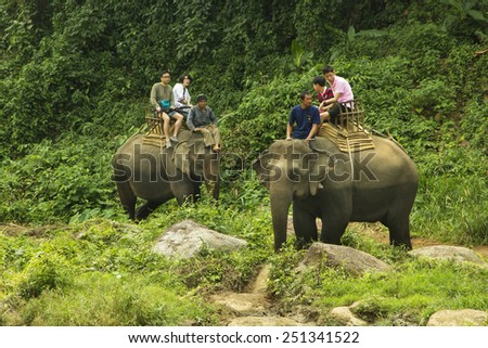CHIANG MAI, THAILAND - FEBRUARY 9 : Tourists riding on the elephant across river Maetang on FEBRUARY 9, 2015 in Chiang Mai, Thailand. 