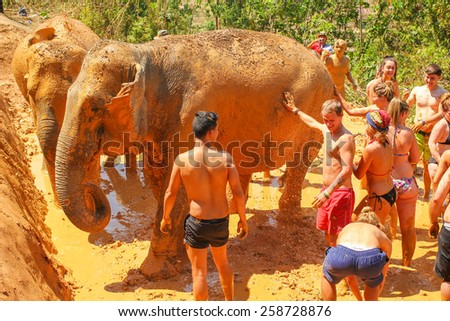 CHIANG MAI, THAILAND - MARCH 7 : People can opportunity to experience the lifestyle of elephants and mud spa with the elephant. (no hook, no chain) on MARCH 7, 2015 in Chiang Mai, Thailand.