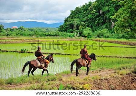 Chiang Rai, Thailand - August 2, 2011: Buddhist monk of Golden Horse Temple  riding a horse in rice field