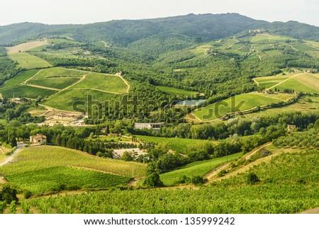 Chianti landscape near Radda (Siena, Tuscany, Italy), with vineyards and olive trees at summer - stock photo
