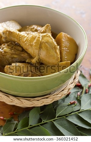 Chicken and Potato Curry. Non sharpen - stock photo