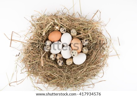 Chicken and quail eggs in nest of straw. Top view. On white background