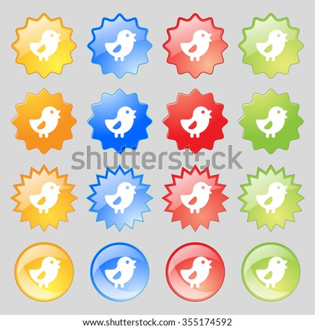 chicken, Bird icon sign. Set from fourteen multi-colored glass buttons with place for text. illustration - stock photo