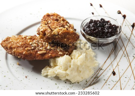 chicken breast with mashed potatoes - stock photo