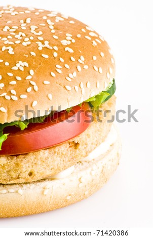 Chicken burger with tomato cucumber lettuce and mayonnaise over white